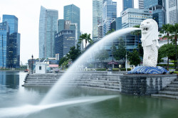 Singapore—the new home for Hong Kong families?